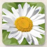 Love the daisy coaster