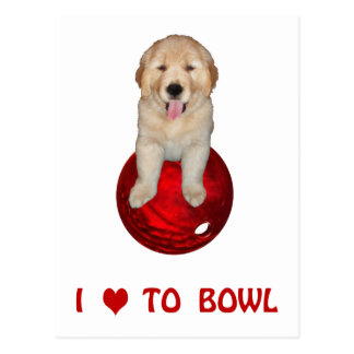 Love to Bowl Shirts and Novelty Gift Items Postcard