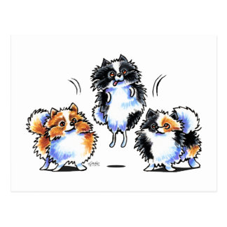 Love to Parti Pomeranians Postcard