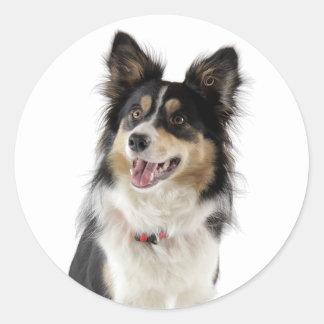 Love Tri-Color Border Collie Puppy Dog Classic Round Sticker