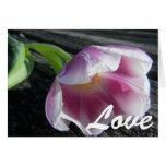 Love Tulip Blank Card