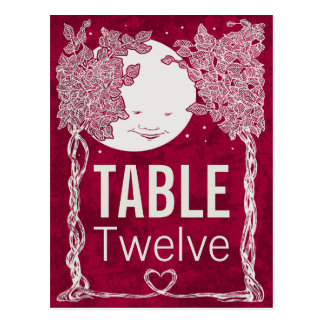 Love Under the Stars table number Postcard