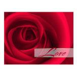 Love.Valentine's Day Customizable Postcards