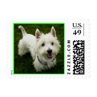 Love West HIghland Terrier Puppy Dog Postage Stamp