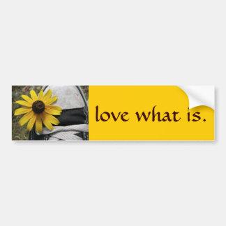 love what is 2 car bumper sticker