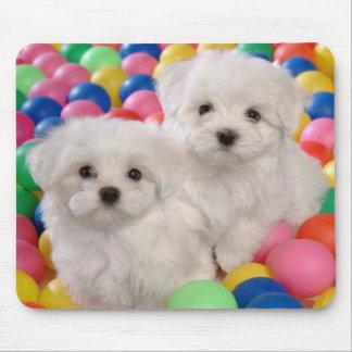 Love White Bichon Frise Puppy Dog Mousepad
