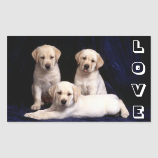 White labrador gifts