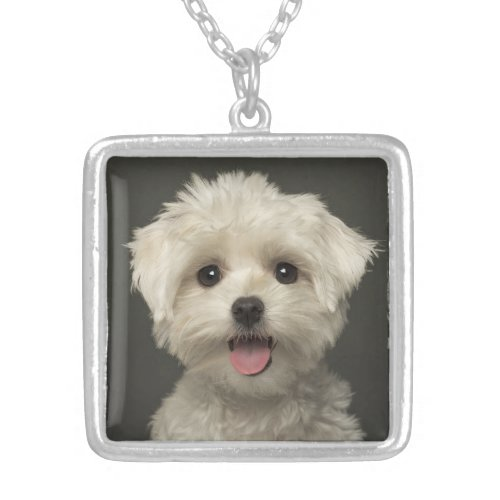 Love White Maltese Puppy Dog Pendant Necklace