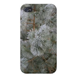 Love Winter! iPhone 4/4S Case