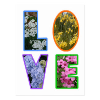 Love with Flowers Postcard