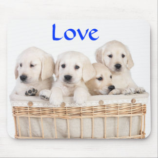 Love Yellow Labrador Retriever Puppies Mousepad