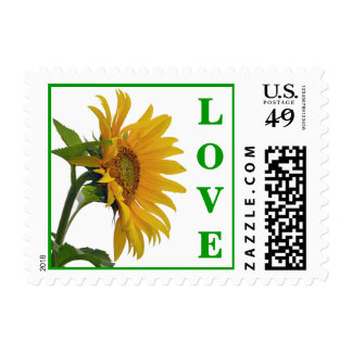 Love Yellow Sunflower Floral  Postage Stamps