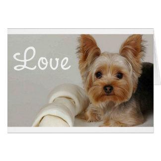 Love Yorkshire Terrier Puppy Dog Blank Card