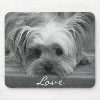 Love Yorkshire Terrier Puppy Dog Mousepad