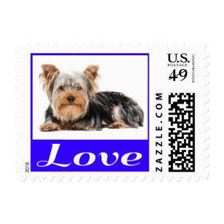 Love Yorkshire Terrier Puppy Dog Postage Stamp
