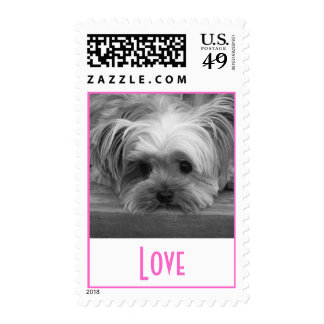 Love Yorkshire Terrier Puppy Dog Postage Stamps