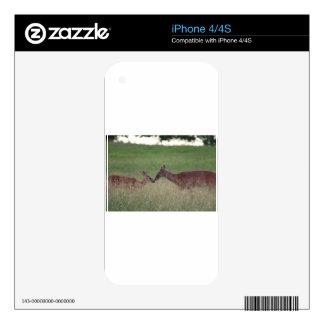 Love you deer iPhone 4 skins