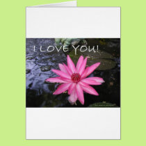 LOVE YOU , HAPPY BIRTHDAY, GET WELL CARD