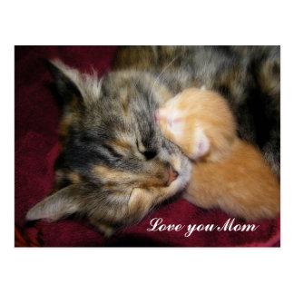 Love You Mom Postcard
