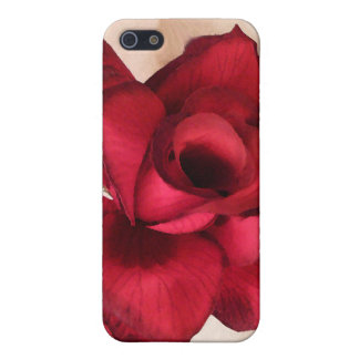 Love You-Red Rose_ Cases For iPhone 5