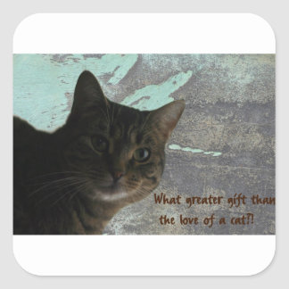 Love Your Cat Sticker