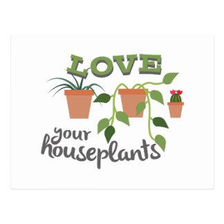 Love Your Houseplants Postcard