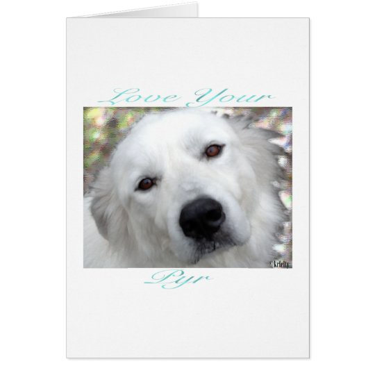 Love Your Pyr Great Pyrenees Teal Card