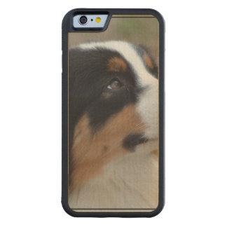 Loveable Australian Shepherd Carved® Maple iPhone 6 Bumper