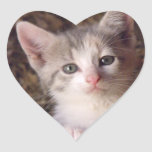 Lovealbe Kitty Stickers
