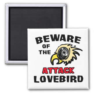 Lovebird del ataque imán cuadrado