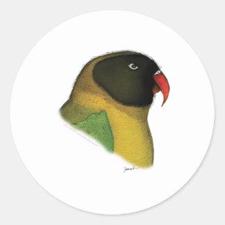 lovebird enmascarado, fernandes tony pegatina redonda