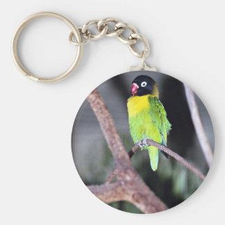 Lovebird enmascarado tropical llaveros personalizados