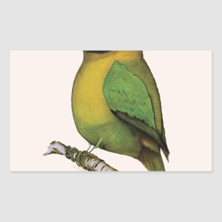 lovebird, fernandes tony pegatina rectangular