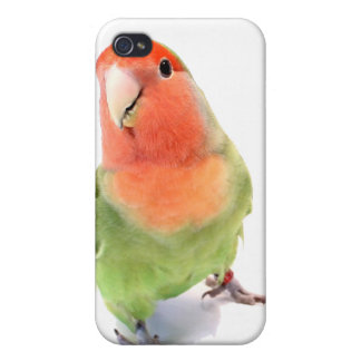 Lovebird on White iPhone 4 Cover