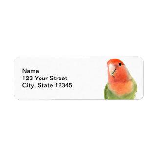 Lovebird on White Return Address Label