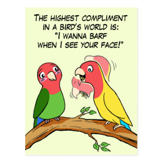 Lovebird parrot and bird way telling i love you postcard