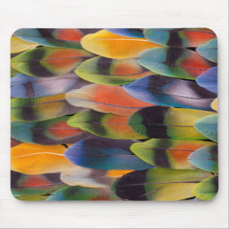 Lovebird Tail Feathers Abstract Mouse Pad