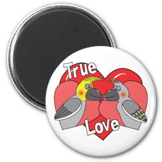 Lovebirds Cartoon Cockatiels Magnet