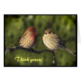 Lovebirds Earth Day