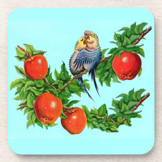 lovebirds or love birds or bird lovers coaster