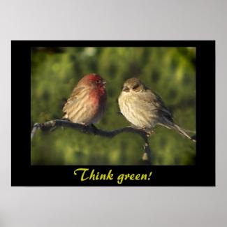 Lovebirds Think Green