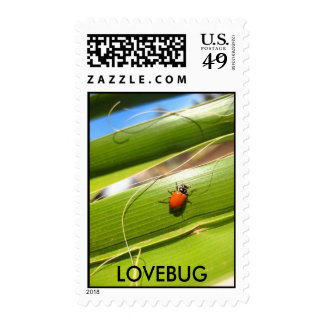 LOVEBUG STAMPS