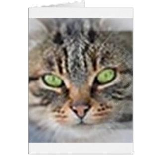 LoveCat Card