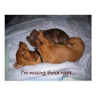 loveis, I'm missing those naps... Postcard