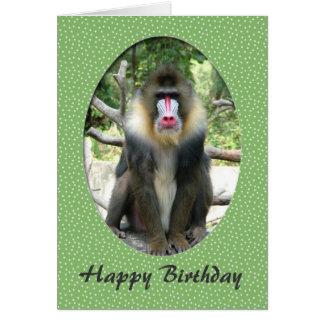 Lovely animal  baboon happy birthday card