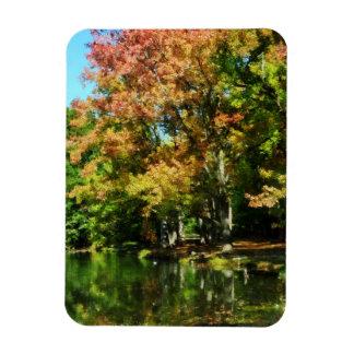 Lovely Autumn Reflection Rectangular Photo Magnet