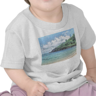 Lovely beach in the Seychelles in the Indian Ocean Tshirt