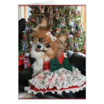 Lovely Bella Shares a Holiday smile Card