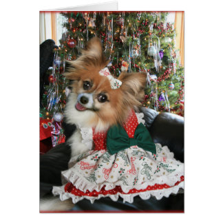 Lovely Bella Shares a Holiday smile Greeting Card