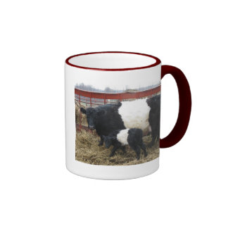Lovely Beltie Cow and Calf Ringer Coffee Mug